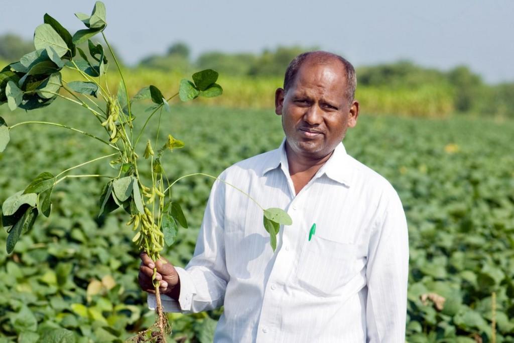 Agricultor soja Índia